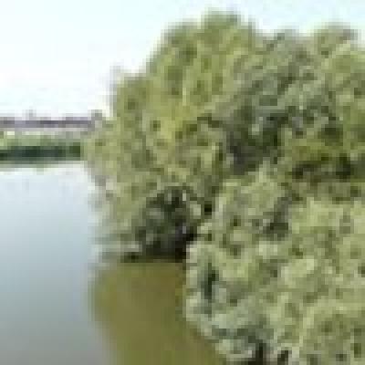 Коритото на река Марица край парк Острова в Пазарджик тъне в боклуци