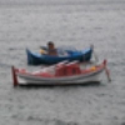 Избрани НОВИНИ от пресата за Вас... - Над 2 000 малки рибарски лодки има във Варненско