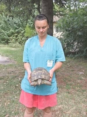 Новите пациенти в Спасителния център - А това е едната от големите и посестрими...