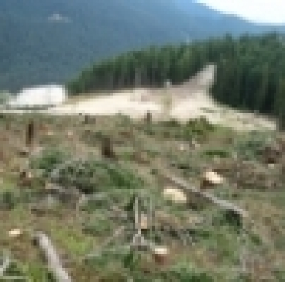 Национален парк Пирин в застрашения списък