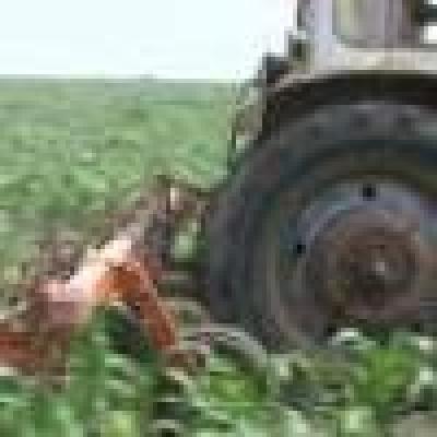 Гарантират кредити на земеделци