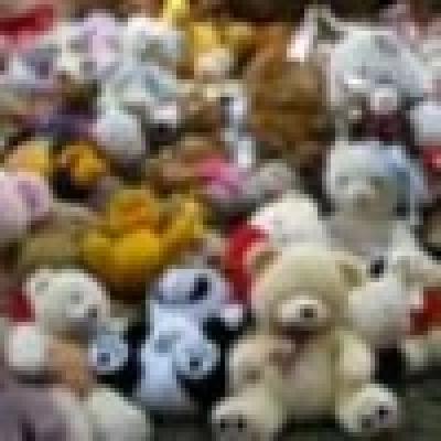 Софийският зоопарк е на първо място сред 25 зоопарка по събрани плюшени мечета на 21 юни