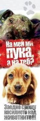 Убити бездомни кучета... в град Стражица