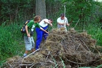 Гнездо на морски орел бе разрушено - Падналото гнездо 2