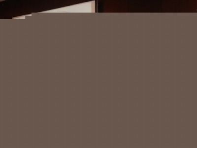 Експертна среща за ловния сокол, Абу Даби -