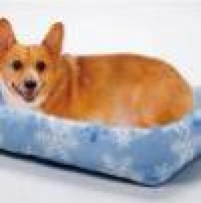 Легла охлаждат хора и животни
