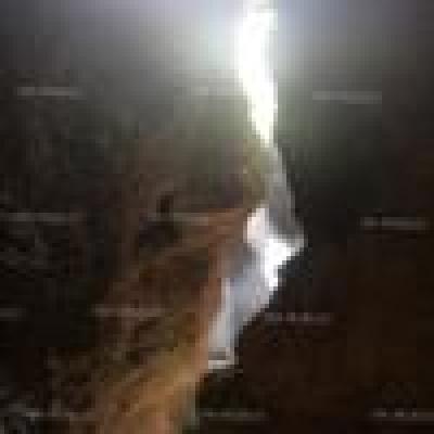 - 15 вида пещерни животни са открити при проучвания на пещера