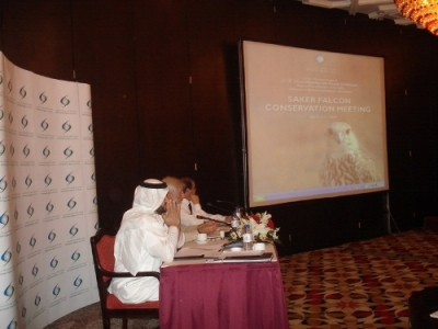 Експертна среща за ловния сокол, Абу Даби