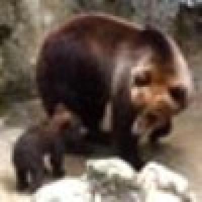 Зоопаркът в Айтос на 40 години