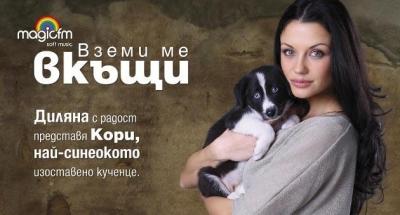 Кампания *Вземи ме вкъщи*, снимка 2