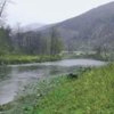 Река  Искър - бяла мряна