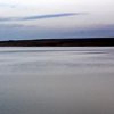 Язовир Овчарица - Канален сом