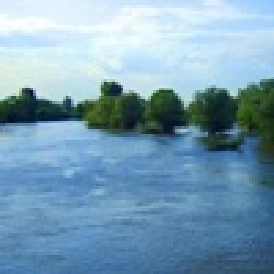 Къде кълве? 10 Юли - 16 Юли 2010г. - Река МАРИЦА - СКОБАР