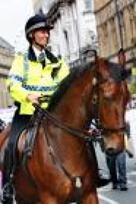 Новини - Полицейски коне пазят столичани
