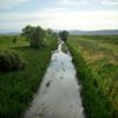Къде кълве 2 април - 8 април 2011 г. - Река Арката - Бабушка