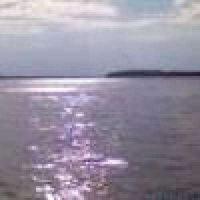 Ученици изчистиха бреговете на Дунав