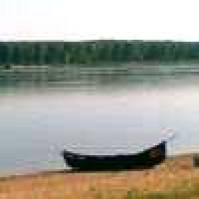 - Река Дунав - Щука