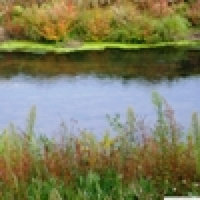 Река Лесновска - Кефал