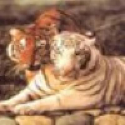 Избрани НОВИНИ от пресата за Вас... - Тигрите в Югоизточна Азия са заплашени от изчезване