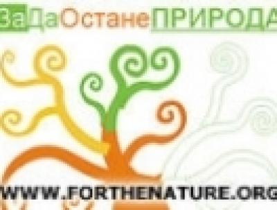 Нови нарушения в Природен парк Витоша!