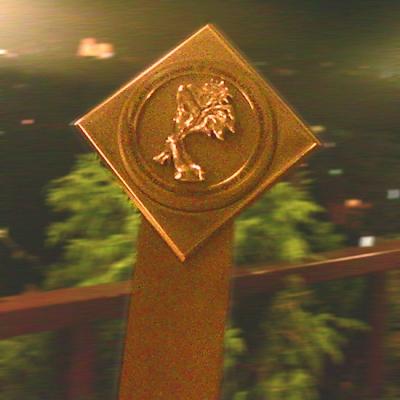 Награда за най-добър уеб сайт Реклама Експо 2009